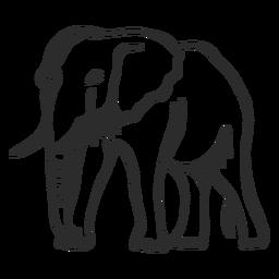 Flaches Gekritzel des Elefantenohrelfenbein-Stammendstücks