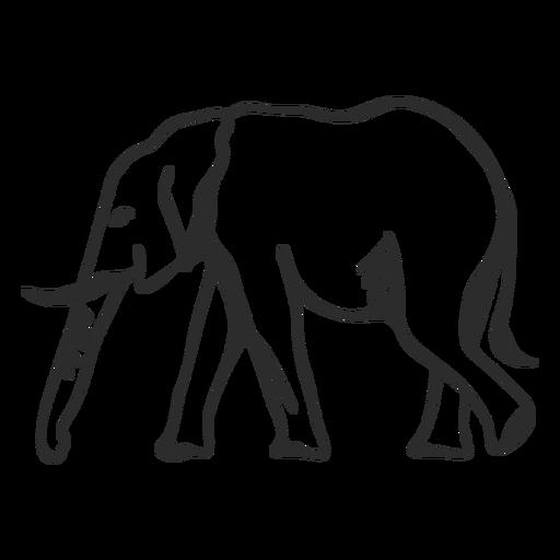 Elephant ivory ear trunk tail flat doodle