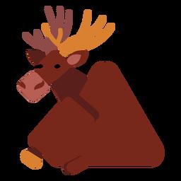 Elk moose hoof muzzle antler rounded flat
