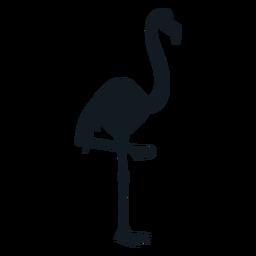 Flamingo pico pierna cola detallada silueta