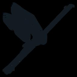 Ausführliche Silhouette des Flamingoschnabelflügel-Schwanzbeines
