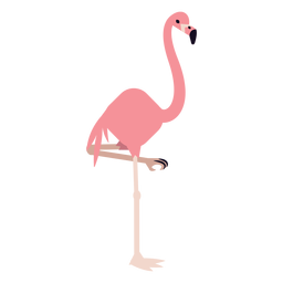 Flamingo leg beak pink rounded flat