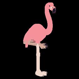Flamingo pierna pico rosa redondeado plano