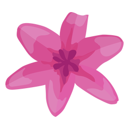 Blütenknospe Blütenblatt flach