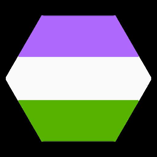 Genderqueer hexagon stripe flat Transparent PNG