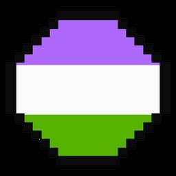 Género raya octogonal pixel plana