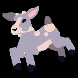 Cuerno de pezuña de cabra cola redondeada plana