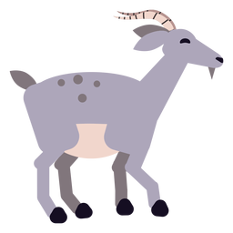 Cauda de casco de chifre de cabra arredondada plana