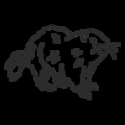 Doodle de piel de boca de marmota