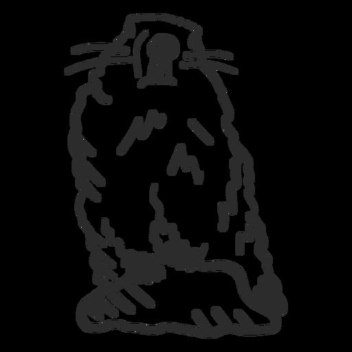 Ground hog marmot muzzle fur stone doodle Transparent PNG