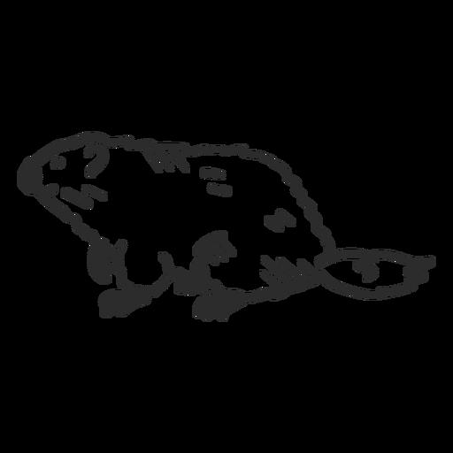 Ground marmota focinho rabo de pêlo rabiscar doodle Transparent PNG