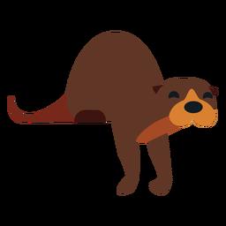 Kalan muzzle fur tail rounded flat