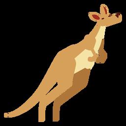 Bolsa de canguru de cauda de canguru arredondada plana