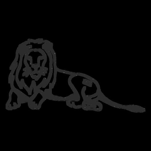 Doodle de la cola de león rey cola Transparent PNG