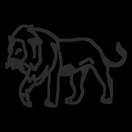 Doodle de cola de león de melena rey Transparent PNG