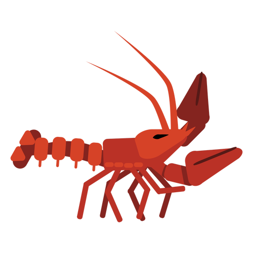 Lobster antenna claw tail rounded flat Transparent PNG