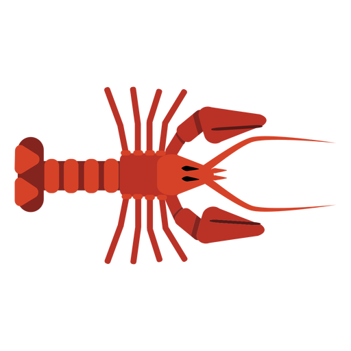 Lobster antenna tail claw rounded flat Transparent PNG