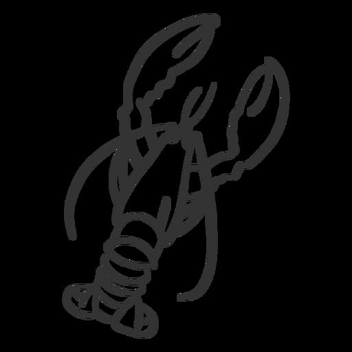 Garra de cola de langosta garra garabato Transparent PNG