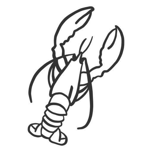 Lobster tail antenna claw doodle Transparent PNG