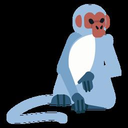 Pé de cauda de focinho de macaco sentado plano arredondado