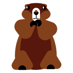 Focinho de pele de lontra sentado plano arredondado