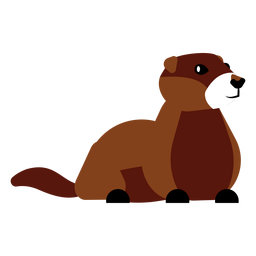 Focinho de cauda de pele de lontra arredondado