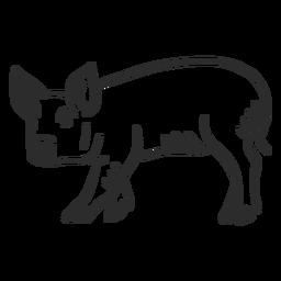 Schwein Huf Schnauze Ohr Gekritzel