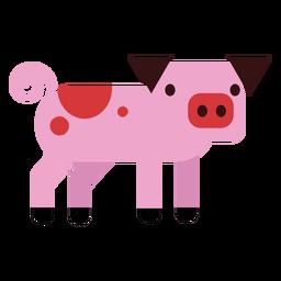 Pata de cerdo hocico oreja redondeada plana