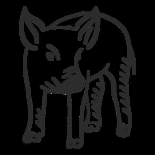 Schwein Schnauze Ohr Huf Gekritzel Transparent PNG
