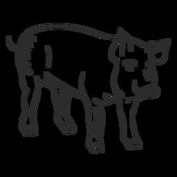 Schwein Schnauze Huf Ohr Gekritzel