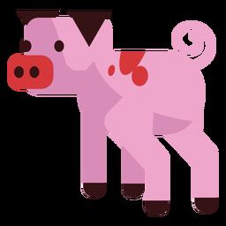 Ojo de hocico de cerdo con oreja redondeada plana