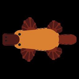 Platillo pico de pato cola de hocico redondeado plano