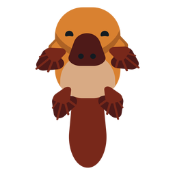 Platypus duckbill tail muzzle beak rounded flat