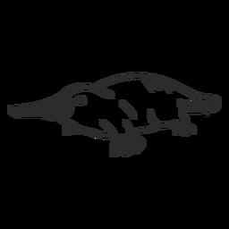 Ornitorrinco cauda bico bico de pato doodle