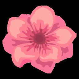 Flor de amapola brote pétalo plana