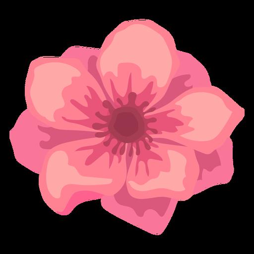 Flor de amapola brote pétalo plana Transparent PNG