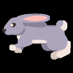 Rabbit bunny muzzle ear tail rounded flat