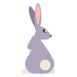 Rabbit bunny muzzle tail ear rounded flat