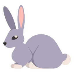 Rabbit bunny tail muzzle ear rounded flat