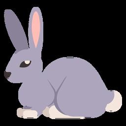Rabo de coelho coelho focinho orelha arredondada plana