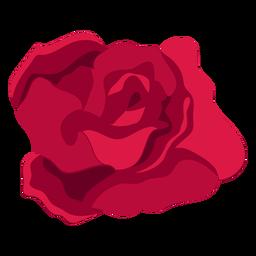 Flor de rosa brote pétalo plana