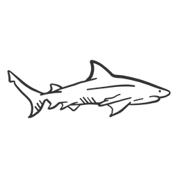Shark fin tail doodle