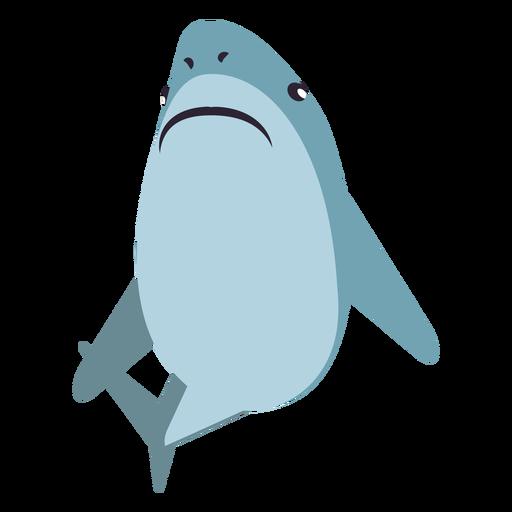 Aleta cola de tiburón cola redondeada plana Transparent PNG