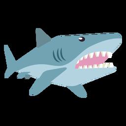 Diente de cola de aleta de tiburón cola redondeada plana