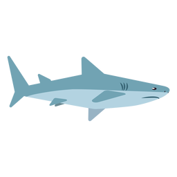 Aleta de tiburón cola cola redondeada plana