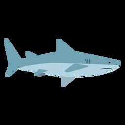 Haifischbackenflosse flach gerundet
