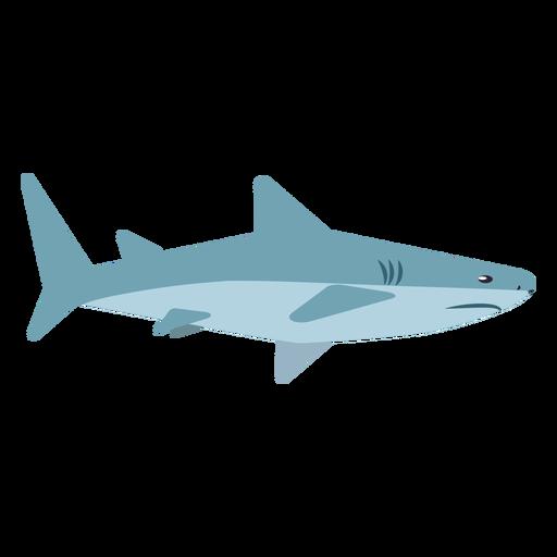Aleta de tiburón cola cola redondeada plana Transparent PNG