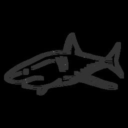 Aleta cola de tiburón doodle