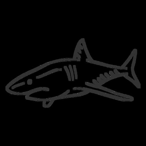 Aleta cola de tiburón doodle Transparent PNG