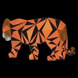 Cauda de listra tigre baixo poli
